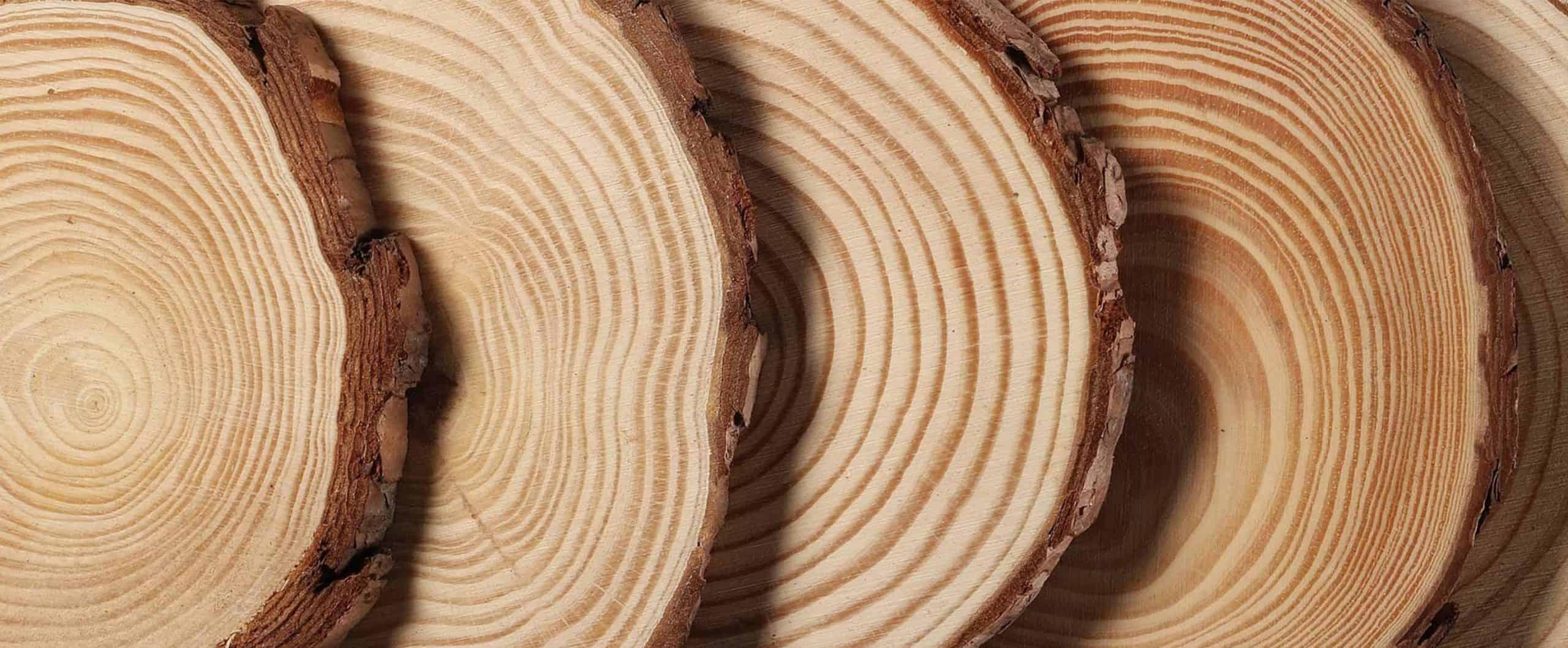 Bois chêne - WoodWorker Shop