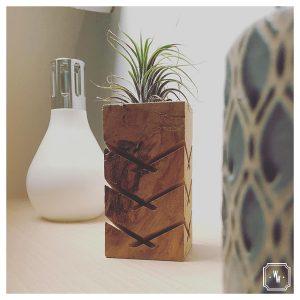 PORTE TILLANDSIA - Décoration en bois